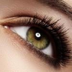 eyelash and eyebrow tinting